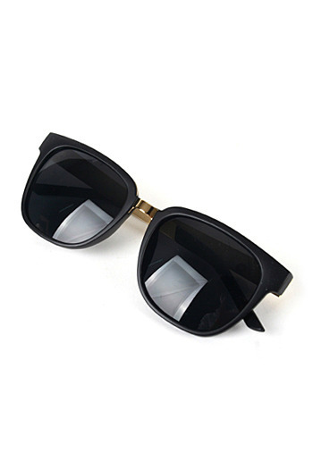SUNGLASS ITEM PS1817